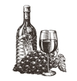 wine logo design template grape or alcohol vector image