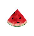 abstract origami watermelon vector image vector image
