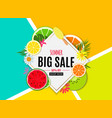 abstract summer sale background with fresh fruits vector image vector image