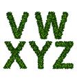 Alphabet vwxyz vector image vector image