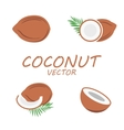 flat coconut icons set vector image