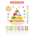 food pyramid infographics vector image vector image
