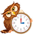 an owl on modern clock vector image vector image