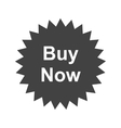 Buy Now Tag vector image