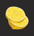 fresh sliced lemon sour citrus fruit vector image vector image