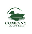 modern floating duck and hunting logo vector image vector image