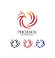 phoenix abstract logo vector image vector image