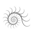spiral design elements abstract lines black vector image vector image