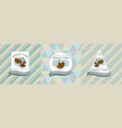 three colored labels with ginkgo vector image