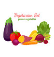 vegetarian set garden vegetables cartoon style vector image vector image