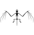 Bat skeleton silhouette vector image vector image