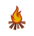 Burning bonfire flat icon vector image