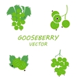 flat gooseberry icons set vector image
