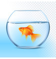 Goldfish In Water Bowl Realistic Image vector image vector image