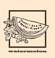 hand drawn watermelon vector image