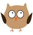 crazy funny owl hand drawn vector image