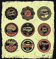 set of retro vintage labels with grunge background vector image