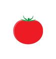 Tomato icon vector image vector image