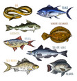 trophy signboards with sea and river fish vector image