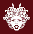 angry gorgon with snakes and open mouth in hand vector image vector image