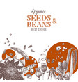 background with hand drawn seeds and beans vector image vector image