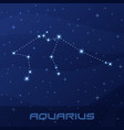 constellation aquarius astrological sign vector image