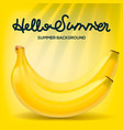 hello summer poster with bananas on yellow vector image vector image