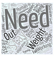 loose weight fast Word Cloud Concept vector image vector image