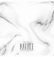 marble stone texture white background vector image vector image