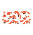 set cute red foxes with black paws isolated on vector image