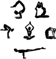 Advanced Yoga poses vector image vector image