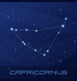 constellation capricornus capricorn astrological vector image