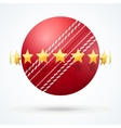cricket leather ball with vector image vector image