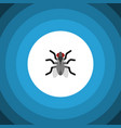 isolated mosquito flat icon gnat element vector image