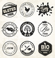 Natural Organic Labels and Badges vector image