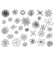 sketch drawing of set of flowers in bloom vector image