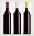 Three bottles of wine vector image vector image