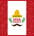 viva mexico hat and mustache confetti decoration vector image vector image
