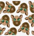 cartoon of the mode animal jackal decorative vector image vector image