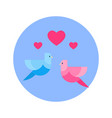 couple of birds with heart shape icon on blue vector image