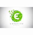 e green leaf logo design eco logo with multiple vector image vector image