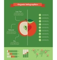 organic infographics with apple and charts vector image vector image