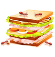 Sandwich and ants vector image