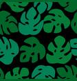 seamless leaves pattern monstera leave on black vector image vector image