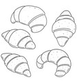 set of croissant vector image vector image
