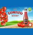 tomato ketchup ads realistic ketchup bottle vector image