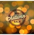 Autumn Sale poster bokeh background vector image