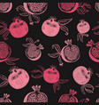 pomegranate fruit seamless pattern hand drawn vector image vector image