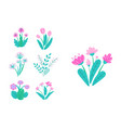 spring garden flowers simple plant bouquet vector image vector image