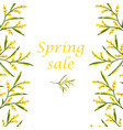 concept of spring sale flyer with mimosa vector image